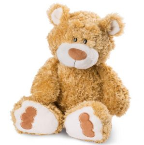 ours teddy Nici